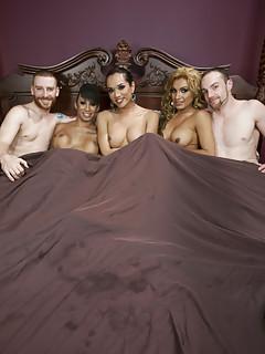 Shemale Orgy Pics